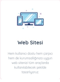 WEB TASARIMI